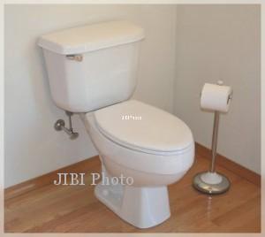 toilet di mal