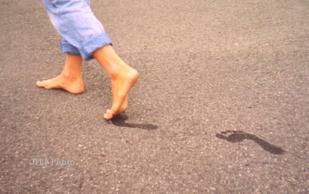 kaki bebek