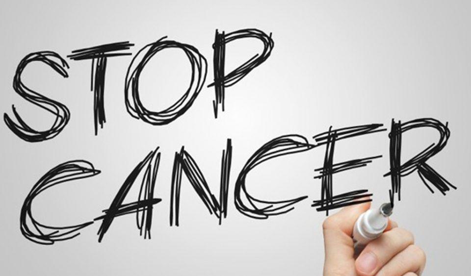 Senyawa Tanaman yang Ada di Indonesia Ini Berpotensi Jadi Obat Kanker