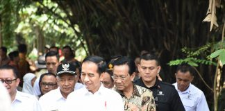 Presiden Dorong Penggunaan Dana Desa Lewat Padat Karya