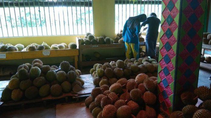 buah yang dibatasi saat konsumsi di musim hujan
