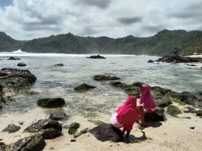 potensi tsunami pantai selatan