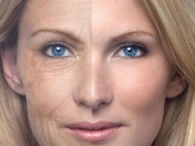 tubuh menua