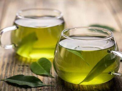 teh hijau ginjal