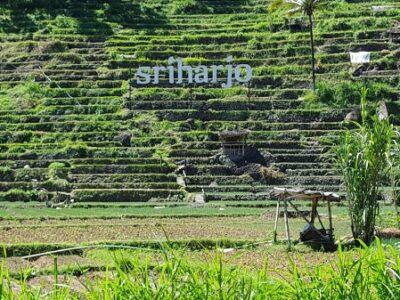 Desa Wisata Srikeminut